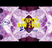Purple Cow 2 v☼id ►2nd Anniversary◄ 紫牛太虛 兩週年紀念派對